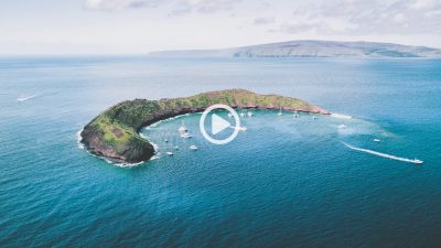 Maui Pledge